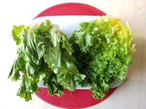 escarole and endive